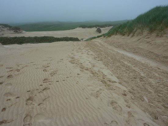 The sand dunes at Faraid Head. You can walk here from Aiden House.