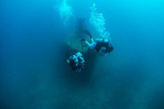 Goodtime Adventures, Koh Tao : Wreck dive
