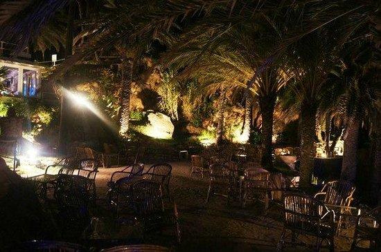 Bar Cala Banys : Бар ночью.