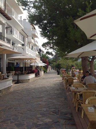 Hoposa Bahia Hotel: The Pine Walk