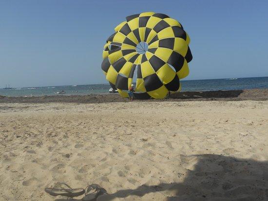 Diana Beach Hotel : in hotel paracadute