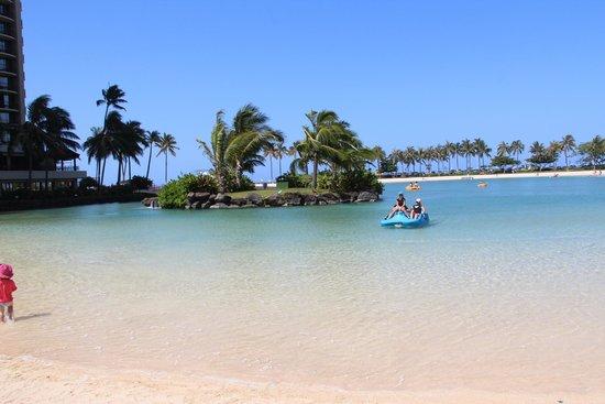Hilton Hawaiian Village Waikiki Beach Resort : Lagoon