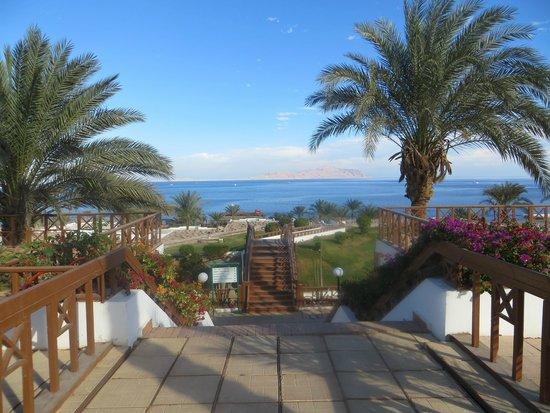 Dessole Pyramisa Sharm El Sheikh Resort: территория отеля