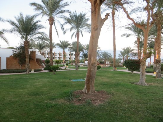 Dessole Pyramisa Sharm El Sheikh Resort: вид из номера
