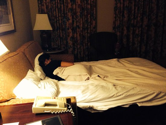 DoubleTree by Hilton Hotel and Suites Charleston - Historic District : My daughter loved the sofa bed!!!