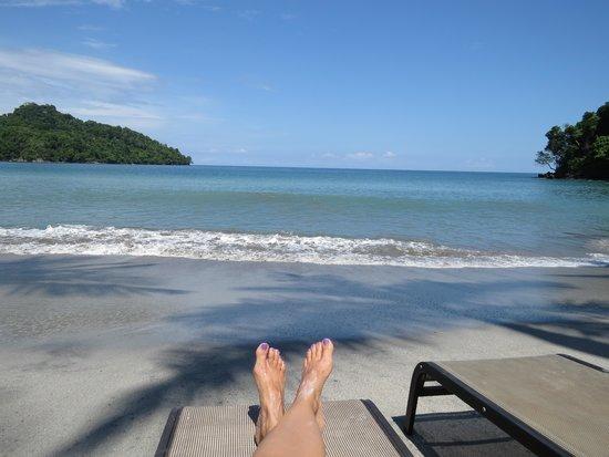 Buena Vista Luxury Villas: Beach Paradise