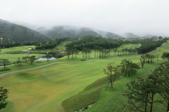 Delpino Golf & Resort: view of the golf course from the room