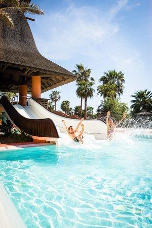 Barcelo Sancti Petri Spa Resort : Piscina
