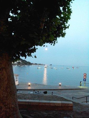 Carpe Diem Cadaqués: Nuit tombante sur la ville