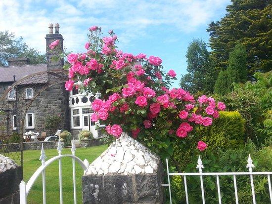 Gwern Borter Country Manor