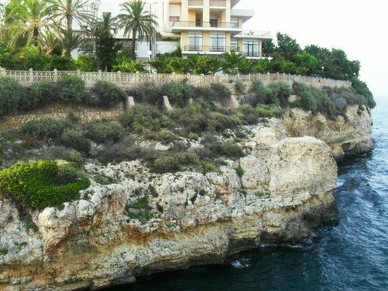 Complejo Calas de Mallorca: Mastines