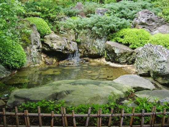 Garvan Woodland Gardens: Pond by the entrance