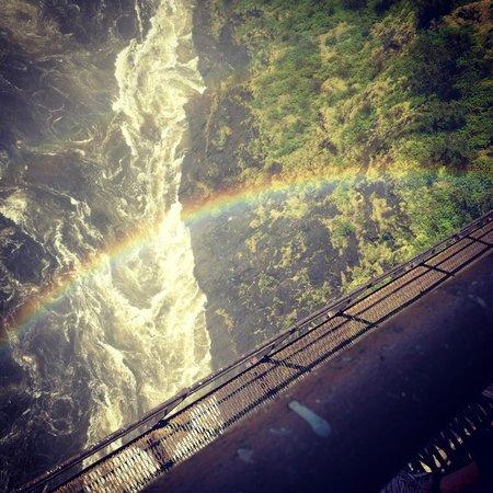 Shearwater Victoria Falls - Bungee, Bridge Tours and Activities: Under the Bridge :)