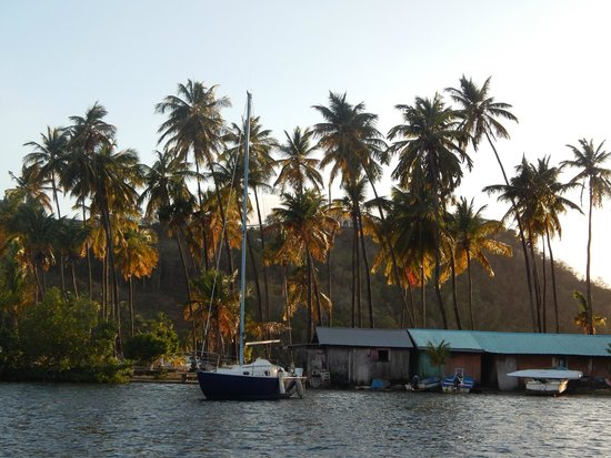 Israel King Water Taxi  Private Tours: Sunset in Marigot Bay