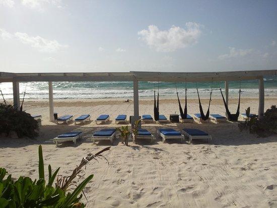 Area de Playa en Coco Tulum