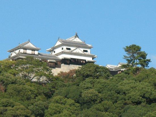 Matsuyama Castle: ...