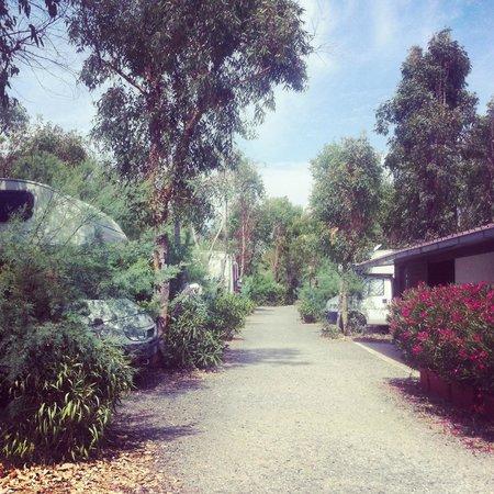 Camping Baia del Marinaio: типичные улочки и тропинки