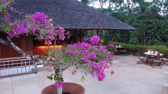 The Pavilion : pavilion