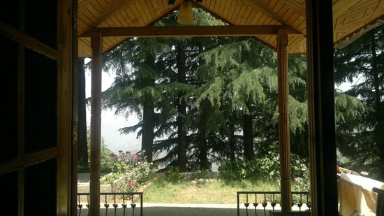 Treehouse Chail Villas: a view behind us