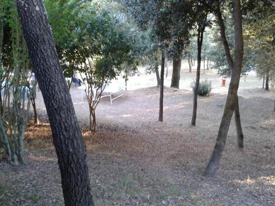 Toscana Verde: Parco dell'Hotel