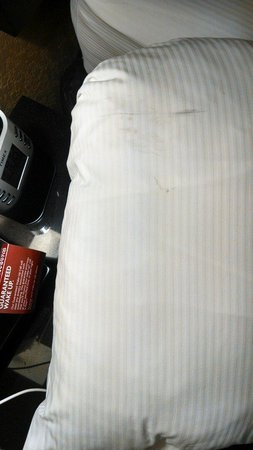 Crowne Plaza Jacksonville Airport Hotel: Grease all over my pillows
