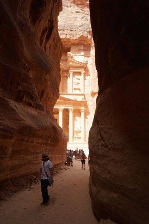 Movenpick Resort Petra : Petra