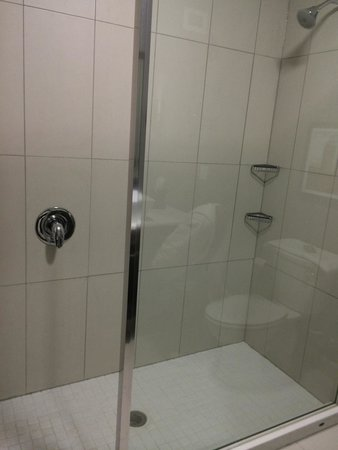 DoubleTree by Hilton West Fargo: Walk in shower, shower head does not adjust but water stream was good