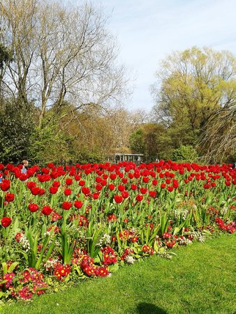 Parque St Stephen's Green: Beautiful spring!