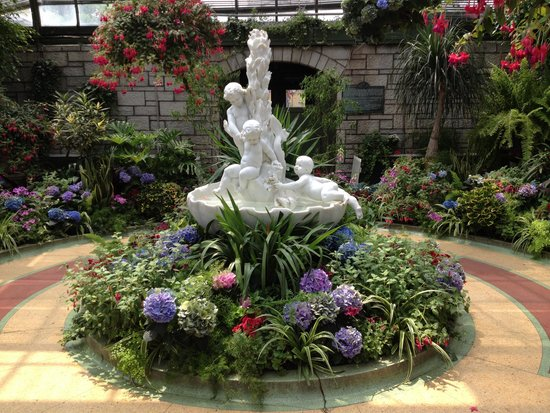Niagara Parks Floral Showhouse: Wonderful beautiful check it out everyone