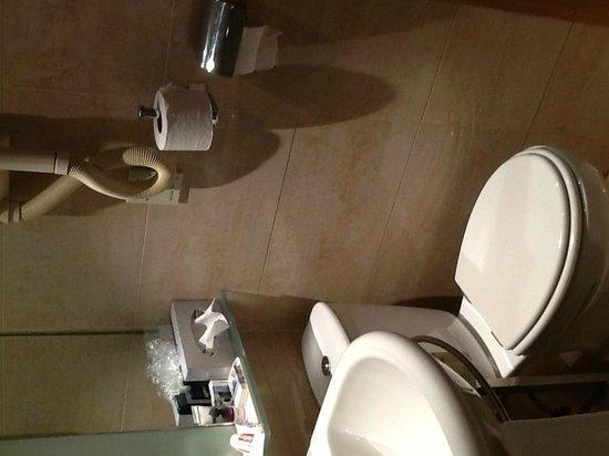 Mercure Porto Centro Hotel : squeezed in toilet