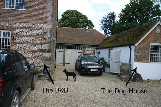 Tarrant Launceston, UK: The Dog House, perfect for your pooch.