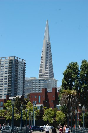 Pier 7 : Another photo of the Transamerica Building