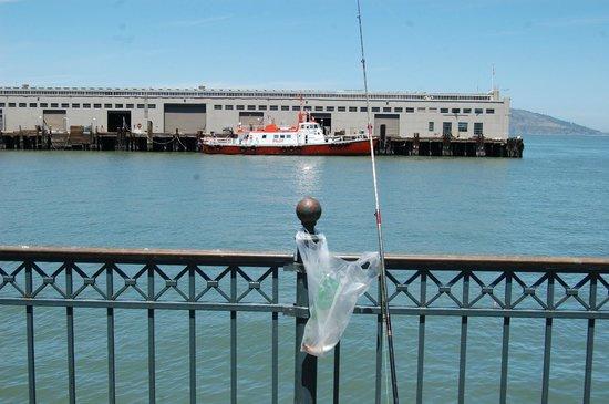 Pier 7 : Fishing time