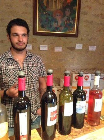 Cathar Country Wine Tours: great wines