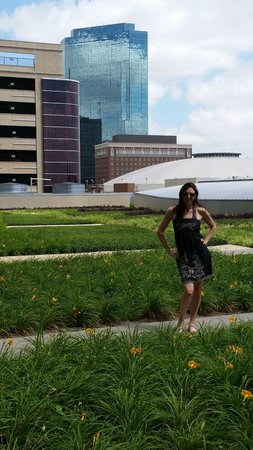Omni Fort Worth Hotel: Lovely rooftop garden (on same floor as swimming pool)