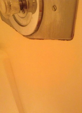 The Enclave Hotel & Suites: rust and mold in shower