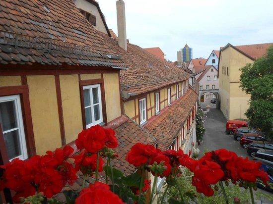 Hotel-Gasthof Goldener Greifen: View from room