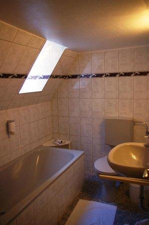 Hotel-Gasthof Goldener Greifen: Our unique bathroom