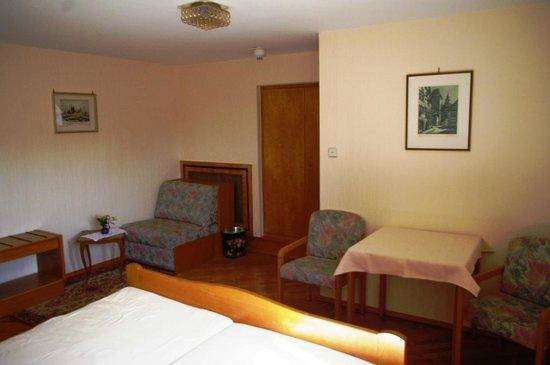 Hotel-Gasthof Goldener Greifen: Room