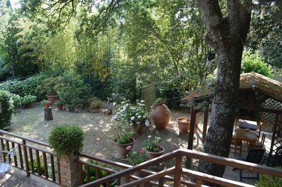 Casa del Poggio: Just below our terrace