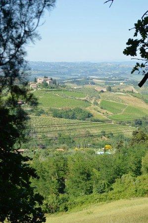 Casa del Poggio: View from our terrace
