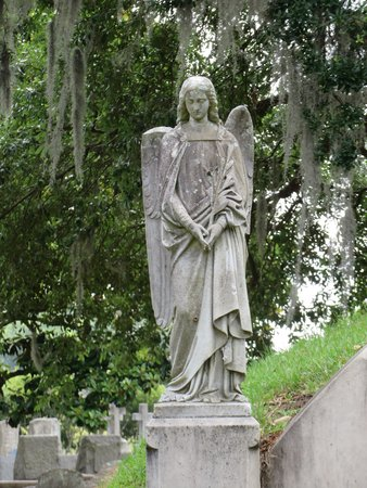 Magnolia Cemetery : Forever Angels
