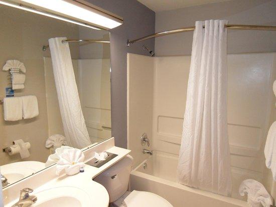 Microtel Inn & Suites by Wyndham Chattanooga/near Hamilton P : Bathroom