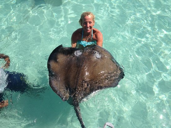 Stingray City : Holding a large female stingray for a photo opp!