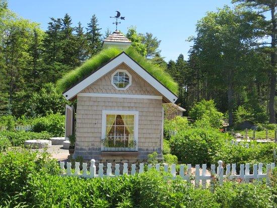 Coastal Maine Botanical Gardens: in the sweet children's garden