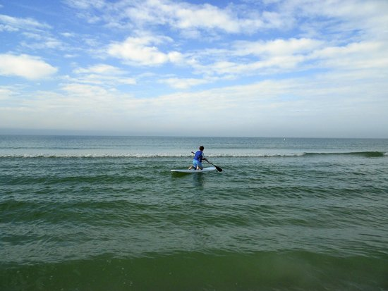 TradeWinds Island Grand Resort : Paddleboarding for the first time! Getting his balance, slowly:)