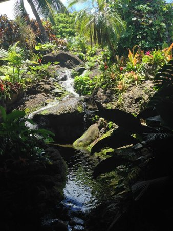 Duke's Kauai : waterfall inside
