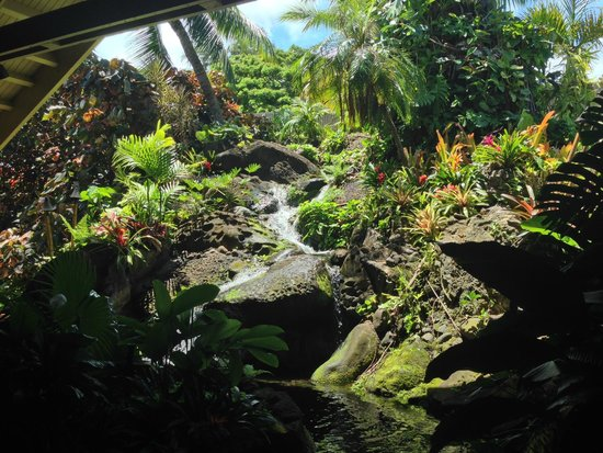 Duke's Kauai: waterfall inside