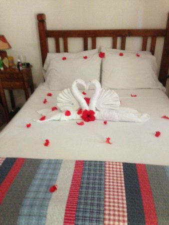 Splash Inn Dive Resort: Room 6 - Swan Towels w/ Red Flowers