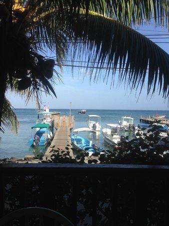 Splash Inn Dive Resort: View from Restaurant